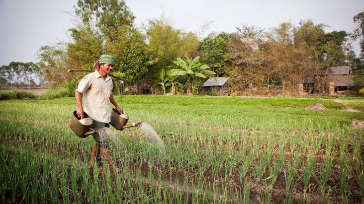 Biogasproject Cambodja